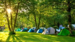 Tips For Camping in The Wild